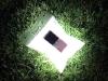 luminaidgrass