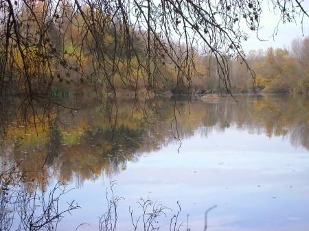 Riberas del río Pisuerga a su paso por Torquemada (Palencia). Otoño 2009