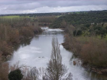 Río Tormes a su paso por el término municipal de Juzbado (Salamanca).