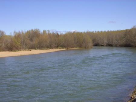 Río Esla a su paso por el término municipal de Ardón (León).