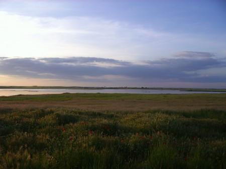 Lagunas de Villafáfila (Zamora). Primavera 2010.